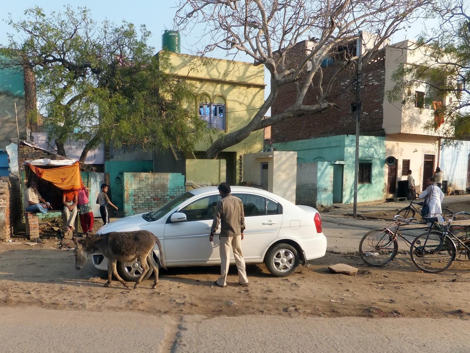 улица в Индии. Вриндаван