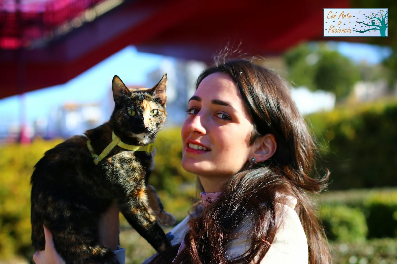 manualidades,gatos,mascotas,fotografía,foto,tiempo,libre,bloggers,blogs,salir,familia,