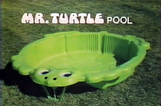 Y Wont My Turtle Eat I figure I really must eat
