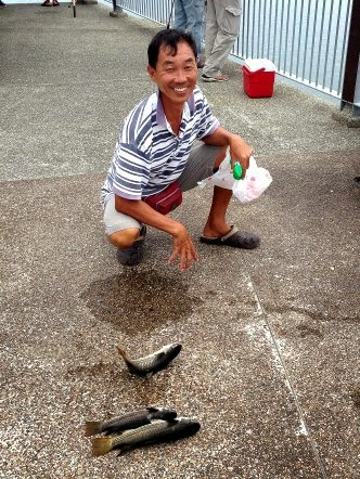Mullet or Chow Orh [ 草乌 ] or Belanak Caught by Joanne weighing 1kg at Woodland Jetty on 22th March 2014