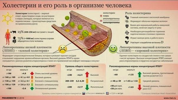 снижение холестерина народными средствами овсом