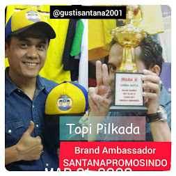 SANTANAPROMOSINDO.NET