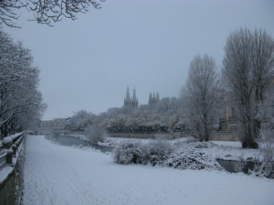 burgos nevado catedral