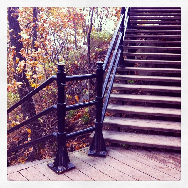 Mont Royal montréal escaliers parc