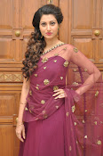 Hamsa Nandini at Bengal tiger audio-thumbnail-5