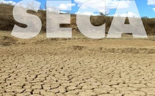 Seca deixa rastro de animais mortos e tristeza em rios e lagoas do ES