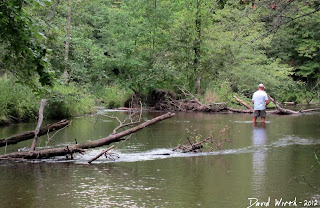 white river fishing, michigan, river fishing