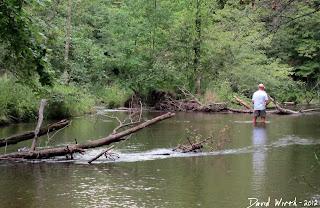 white river fishing, michigan, river fishing