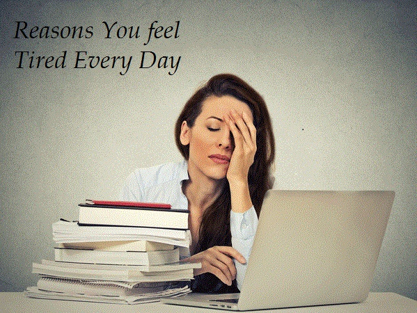 Reasons You feel Tired Every Day