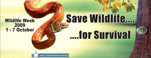 Khera Save Animal Save Earth