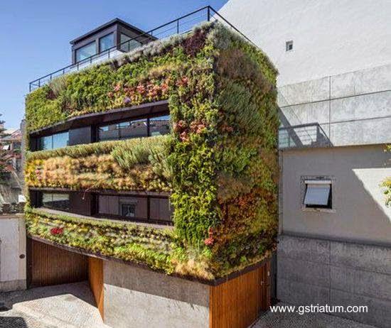 Fachada de plantas vivas en una casa de Portugal