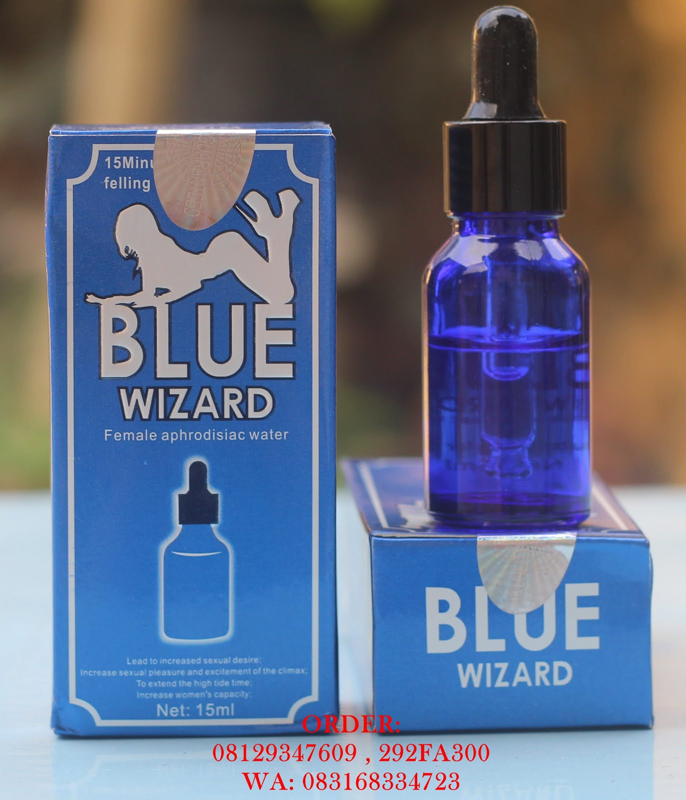 Blue Wizard 08129347609