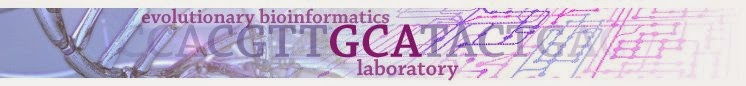 Evolutionary Bioinformatics Laboratory