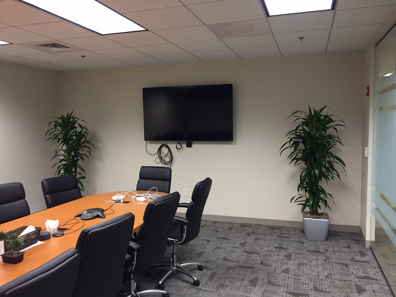 PDI Plants Blog New Installation and Pricing