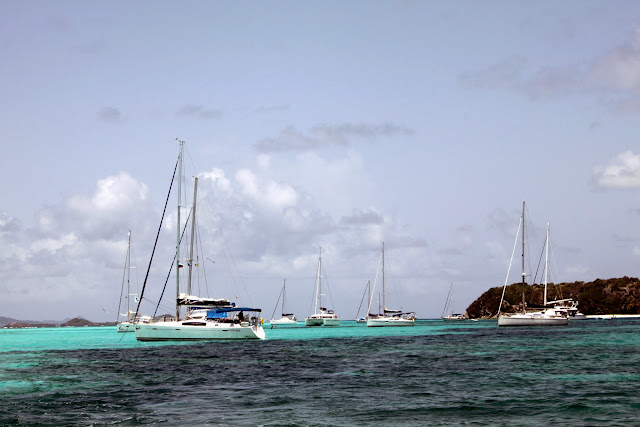 (Peculiar Artistry) Tobago Cays, St. Vincent and the Grenadines