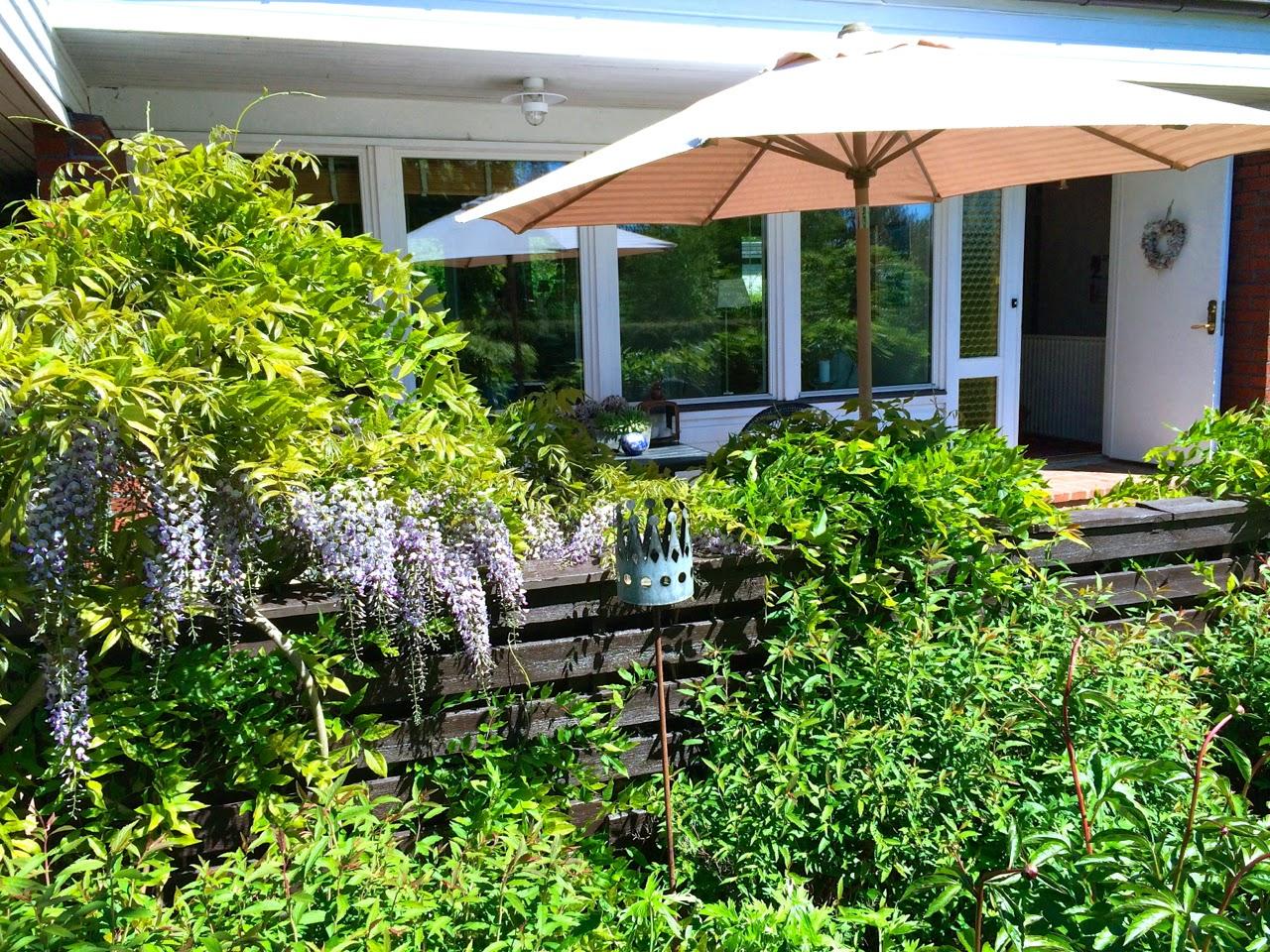 Cattis och eiras trädgårdsdesign: juni 2014