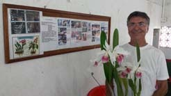 Hora de saber um pouco mais sobre as orquídeas