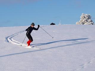 Snowplough Turn