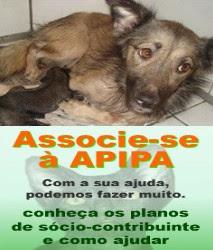 Adote um Animal ou Ajude a Associação dos Animais - APIPA