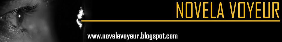 novela voyeur