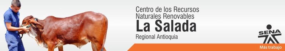 Centro de los Recursos Naturales Renovables La Salada - SENA Regional Antioquia