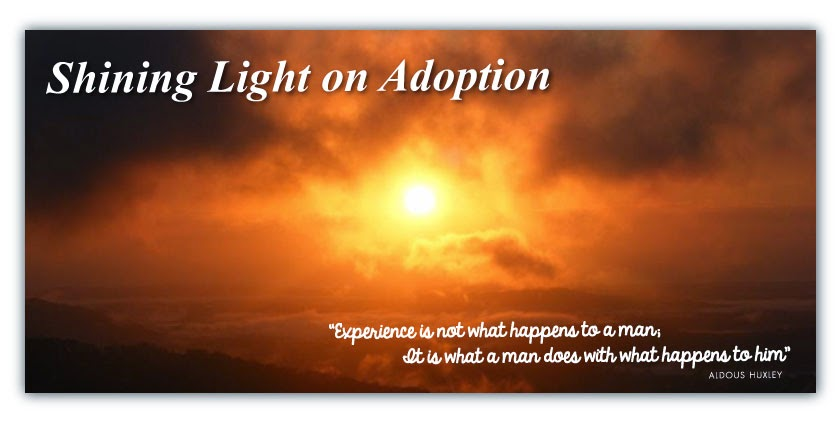 Shining Light on Adoption