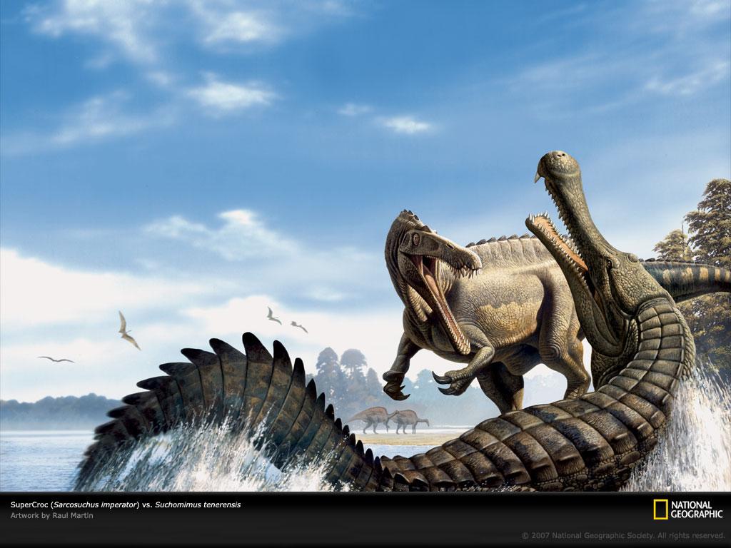 http://1.bp.blogspot.com/-I1cbmiIoh68/TnDBf6-XVNI/AAAAAAAAAVo/1Uh4GW2GGS0/s1600/crocodile-wallpaper-29-715482.jpg