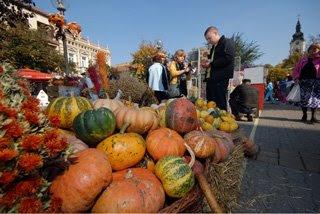 Le Giornate della Zucca a Kikinda, Serbia, zucche grandi, autunno