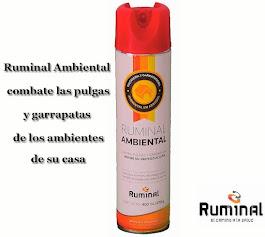 Ruminal Ambiental