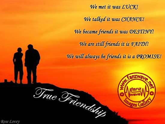 Quotes About Friendship Till The End : Best friend stays till the end