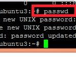 Cara Mengubah Password VPS Debian Mengunakan Putty