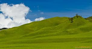 Savanna Gunung Bromo