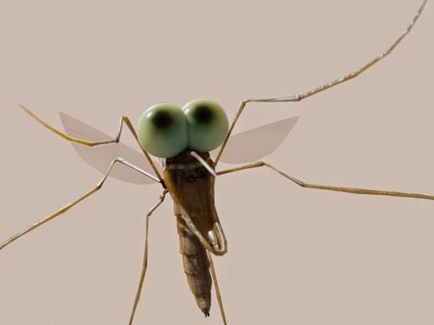 Mosquito Cafe  Th St Galveston Tx