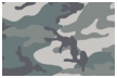 Camo Visa prepaid cards from CARD.com