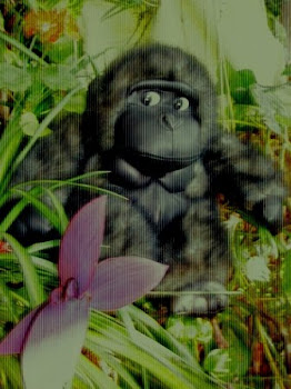 gorila en el jardin