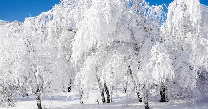 Прогноз зимы для украины на 2018
