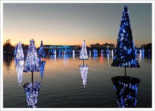 Seaworld Sea of Lights