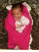 Ivy in her hammock