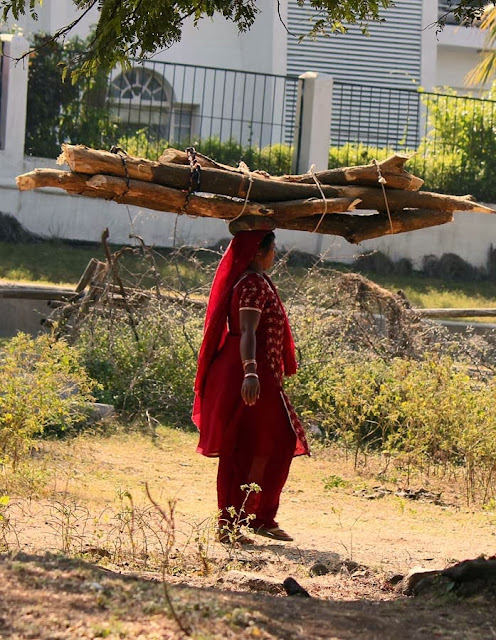 woman carrying a heavy load of firewood