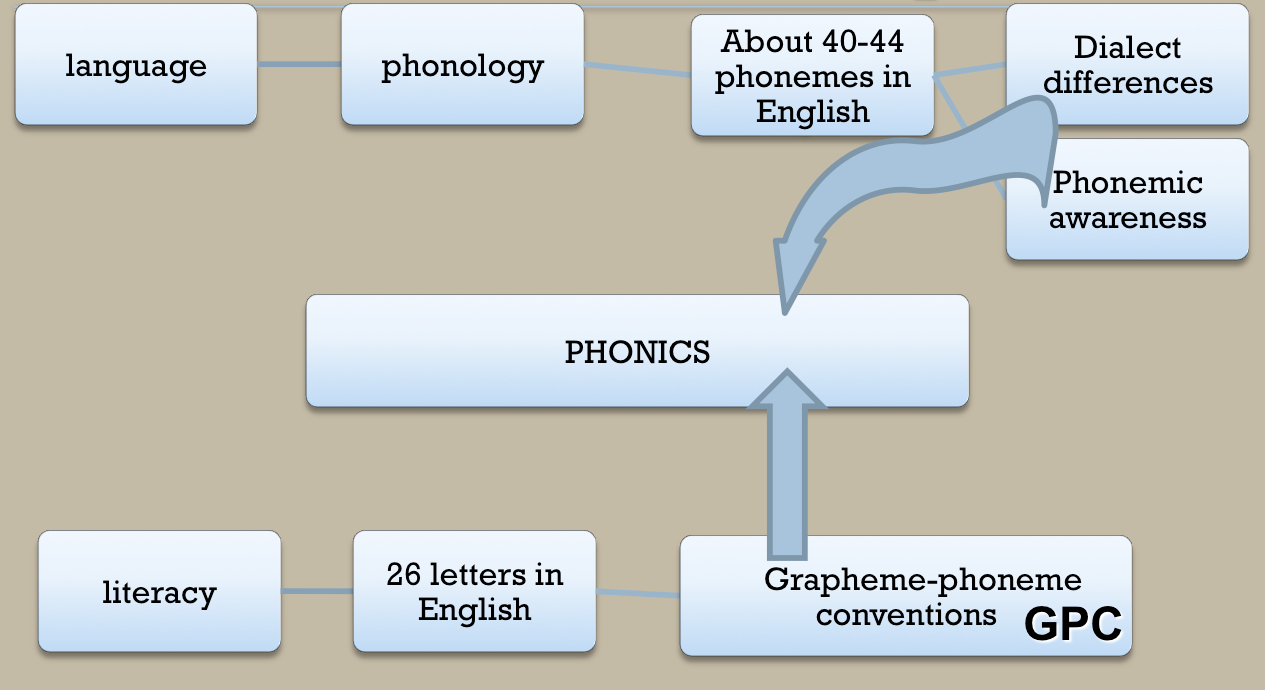 a better understanding of the process in phonics Phonics instruction helps beginning readers understand the relationship between letters and sounds, and letters and words phonics is most effective when introduced early in the reading development process.