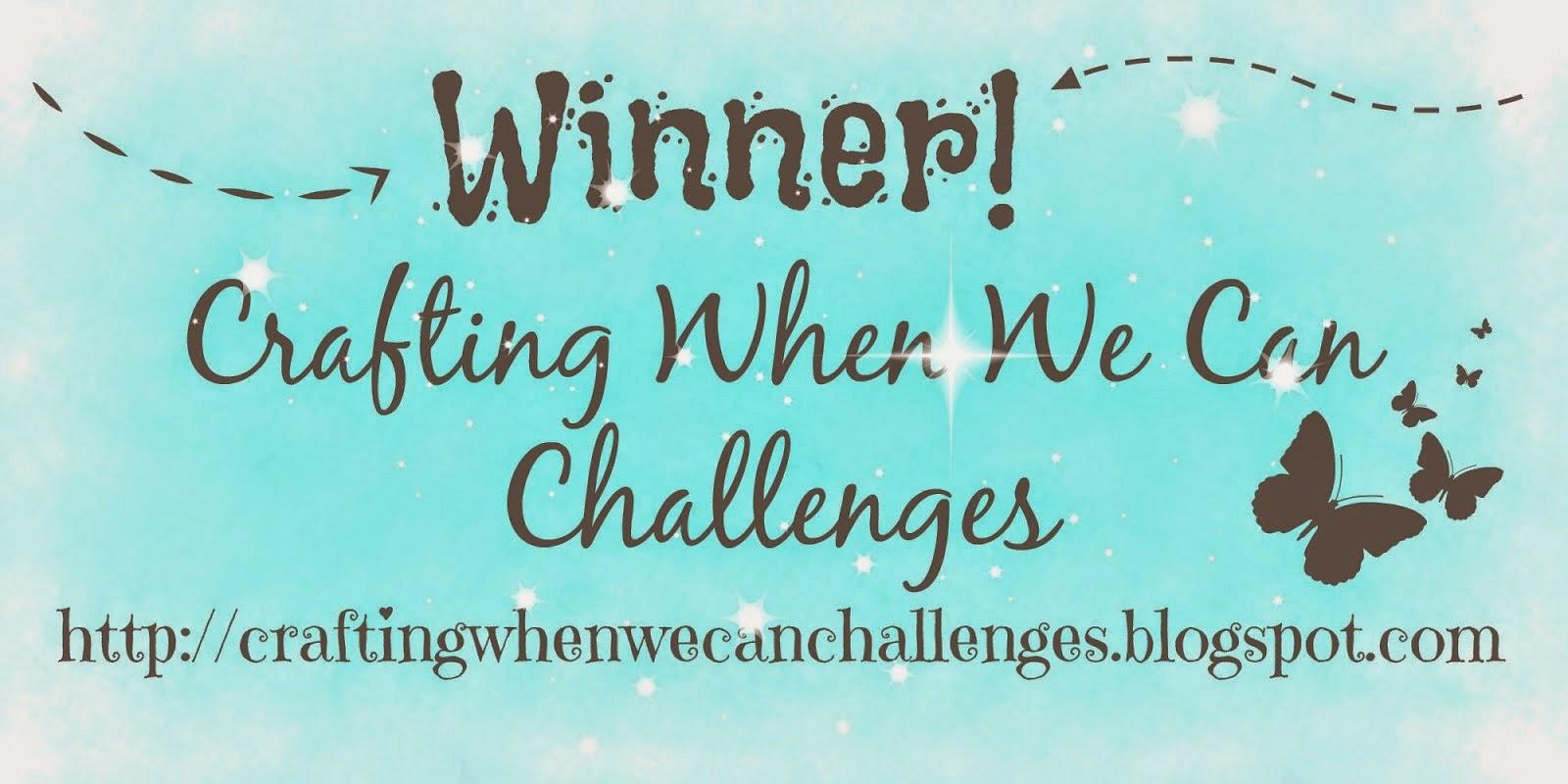 Winner Challenge #131