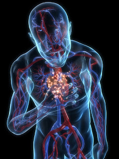 Failure to diagnose & medical malpractice