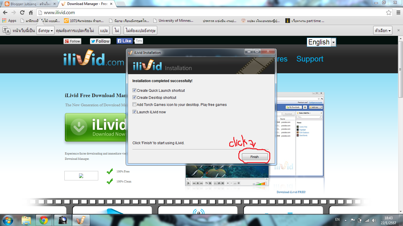 how to install ilivid download manager