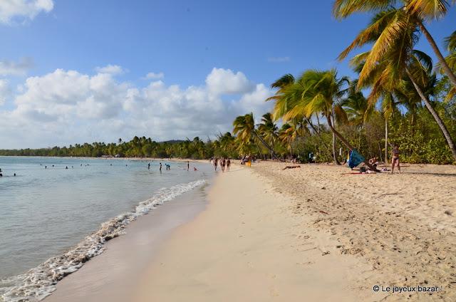 Martinique - Les Salines