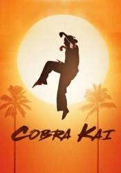 Cobra Kai Temporada 1