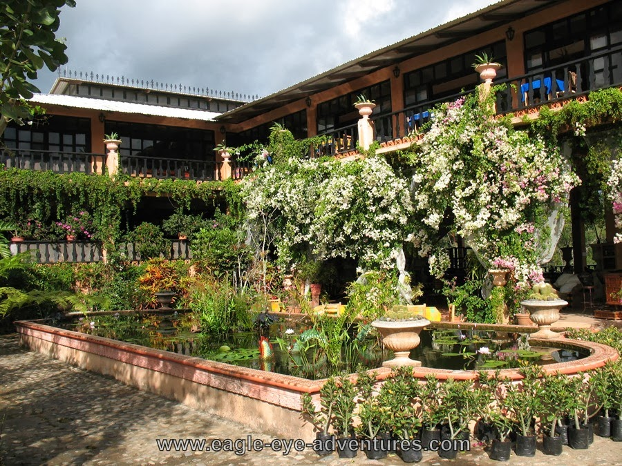 Eagle eye adventures puerto vallarta tropical escape - Puerto vallarta botanical gardens ...