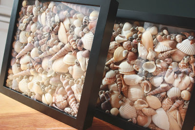 simple shells in shadowboxes craft