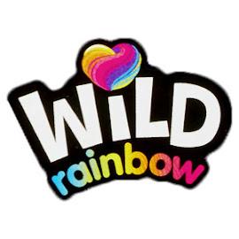 MLP Wild Rainbow Brushable Figures