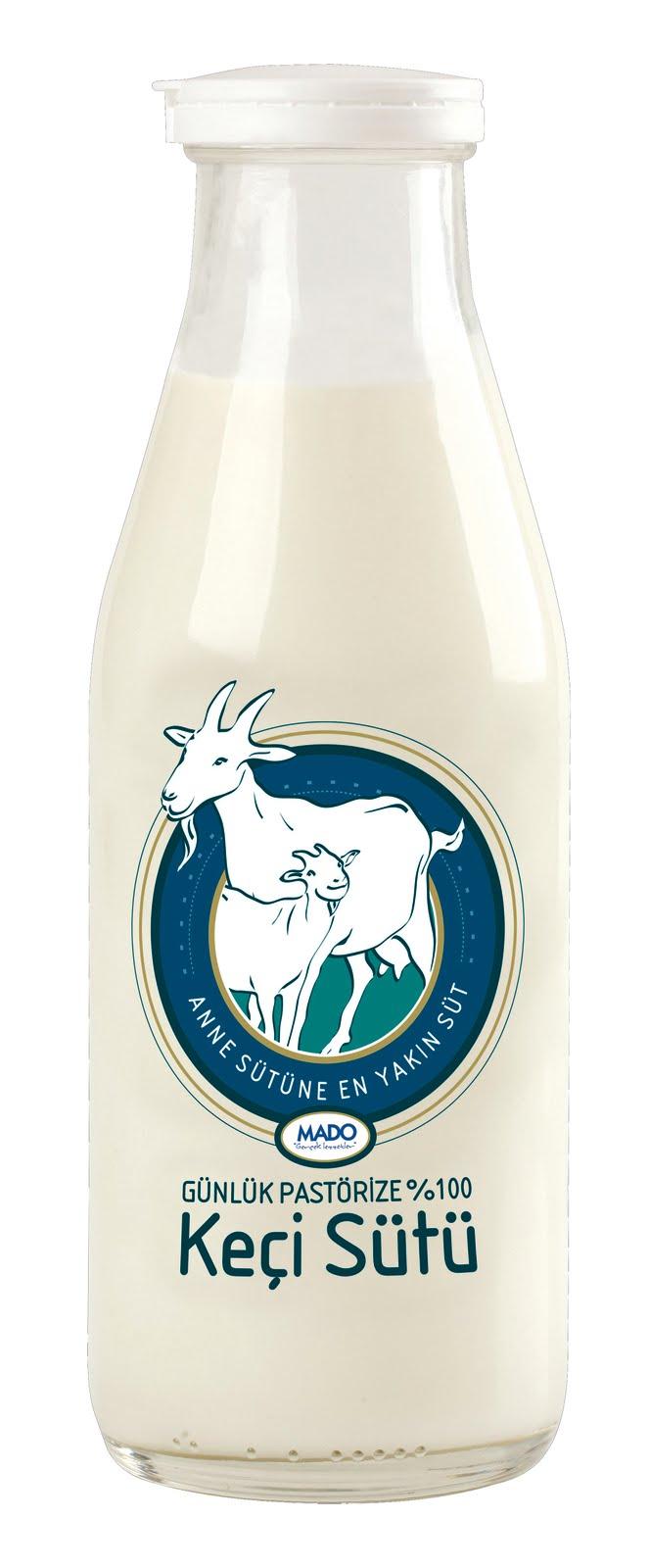 Keçi Sütünün Faydaları Tadı ve İçeriği
