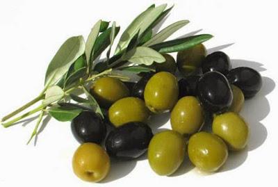 khasiat dan manfaat buah zaitun